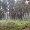 Lynn's fencing nr. Easter Balmoral