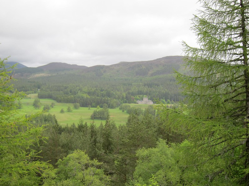 View to Invercauld House from the Lions Face