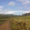 Craigmore Wood