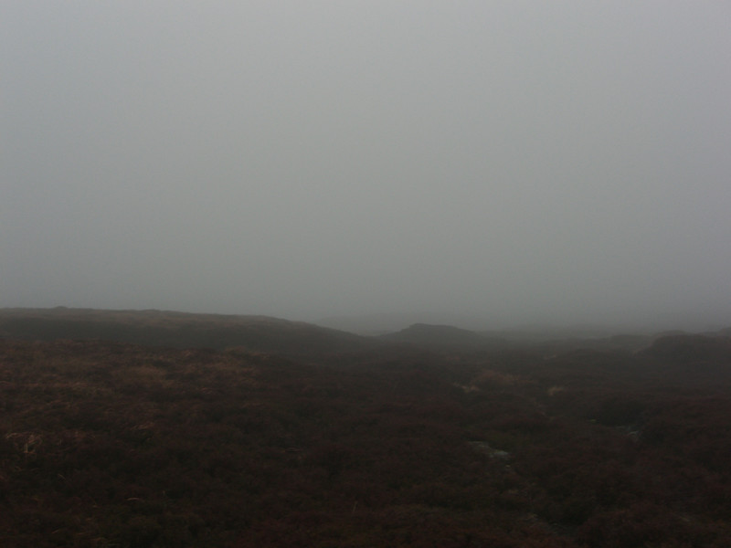 Navigating in heavy fog was a bit of a challenge