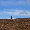 Yomp across heather from Gelder Shiel bothy
