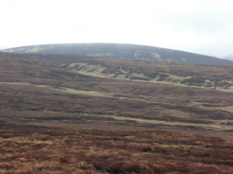 Yet more peat hags
