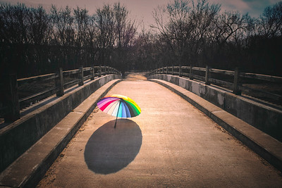 The Color Path Home