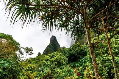 Maui-IaoNeedle-Mountains2
