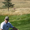 Brad and goat on golf course.