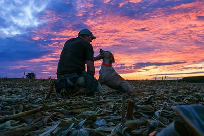 Indiana Dove Hunt 2015