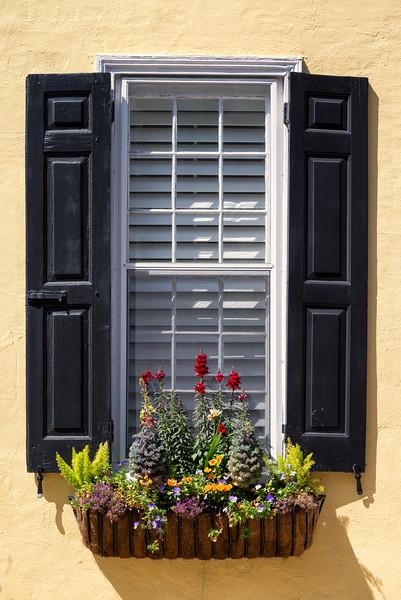 Windows of Charleston
