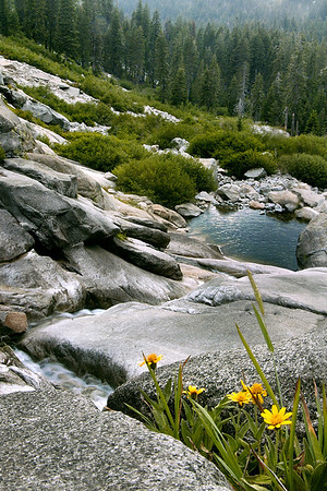 Kaweah River, Sequoia National Park ~July 2005