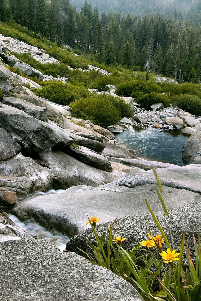 Kaweah River, Sequoia National Park ~July 2005
