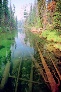 Merced River, Yosemite National Park ~ July 2005