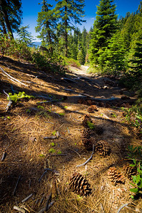 Trail above Chilnualna Falls ~ May 2007
