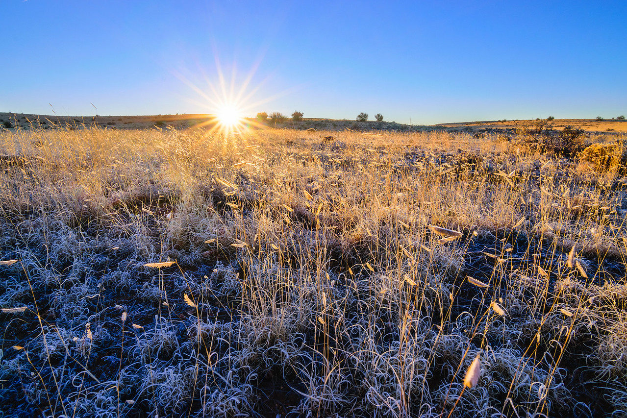 Morning Frost on Havasupai Plateau - Grand Canyon National Park, AZ