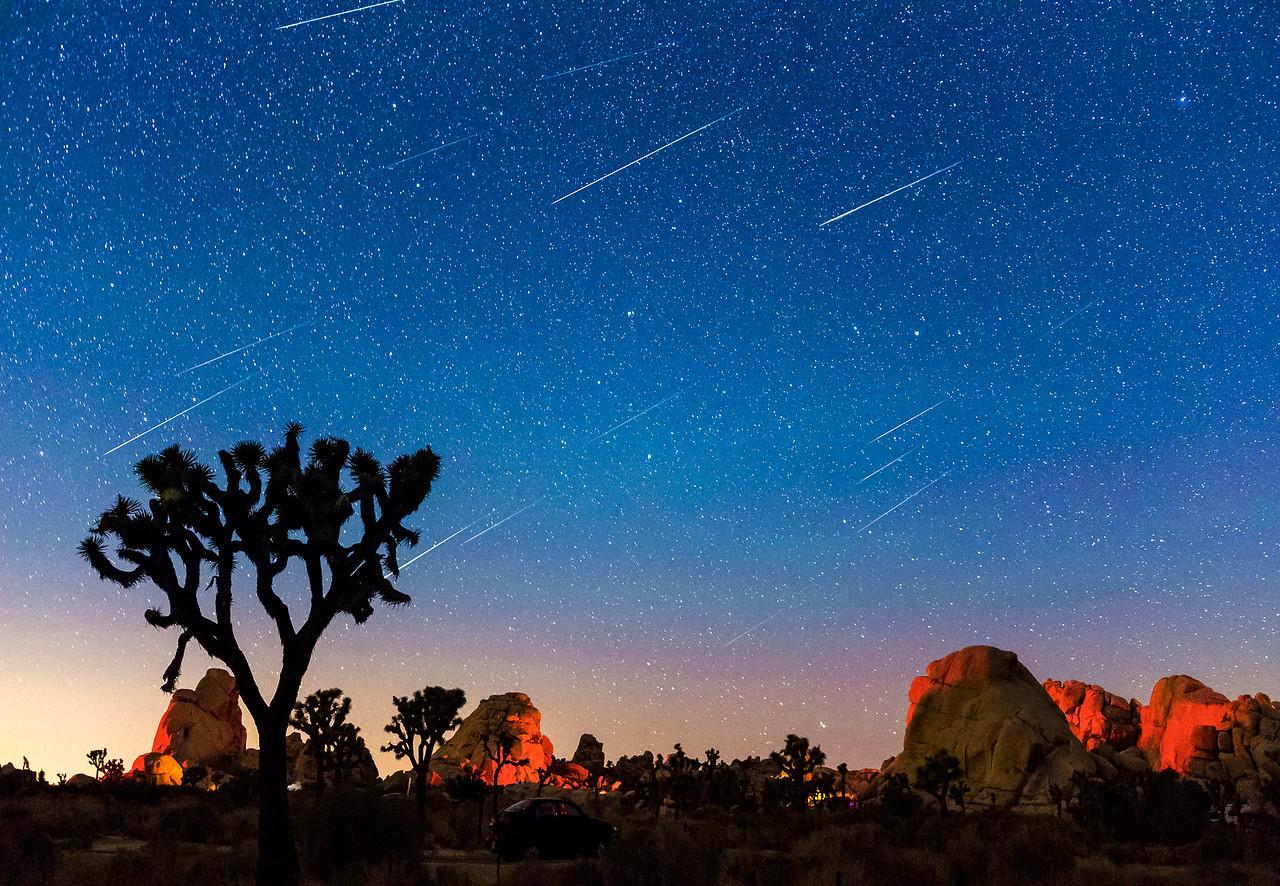 Perseid Meteor Shower, Joshua Tree National Park, California