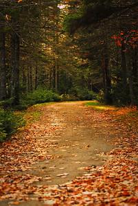 Beaver Mountain Park