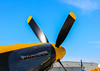 Mustang P 51