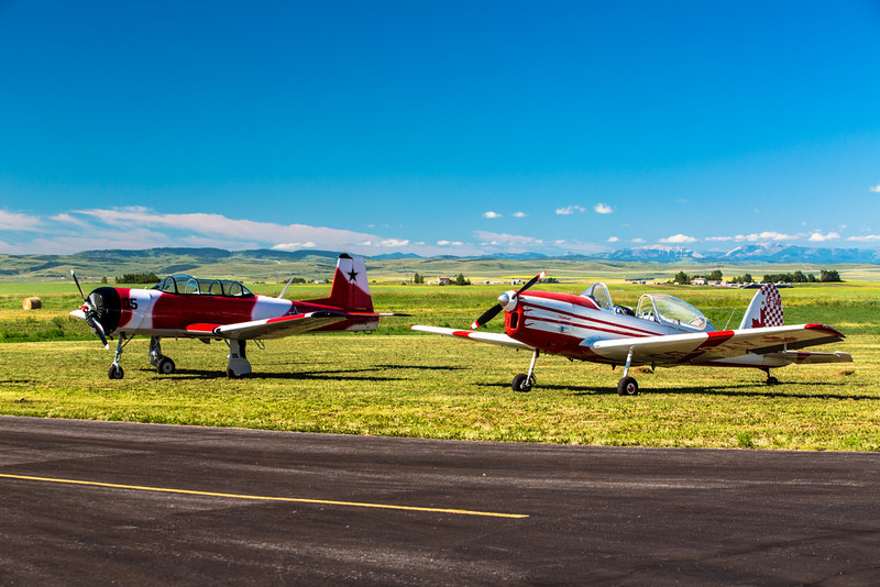 Rare Birds On Flight Line - AJ Flying Ranch