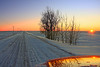 """Sunrise - at -30 Celsius - Southern Alberta<br />  <a href=""""http://ve6ab.blogspot.com/2009/01/extreme-cold.html"""">http://ve6ab.blogspot.com/2009/01/extreme-cold.html</a>"""