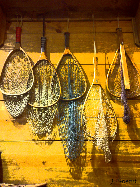 Fish Lore