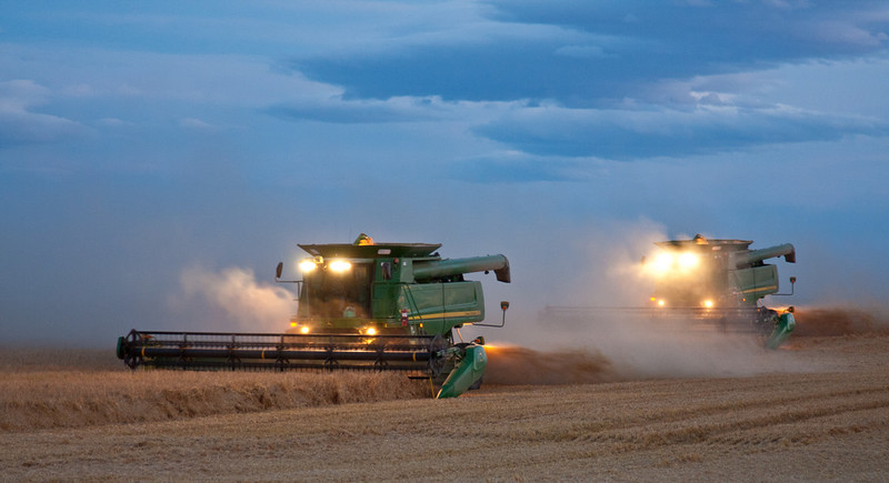 These combines are harvesting Barley that is running 130 bushells to the acre! The farmer that I talked too,  couldn't stop smiling.