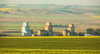 Alberta Farm Country