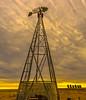Chinook Sunrise - Southern Alberta