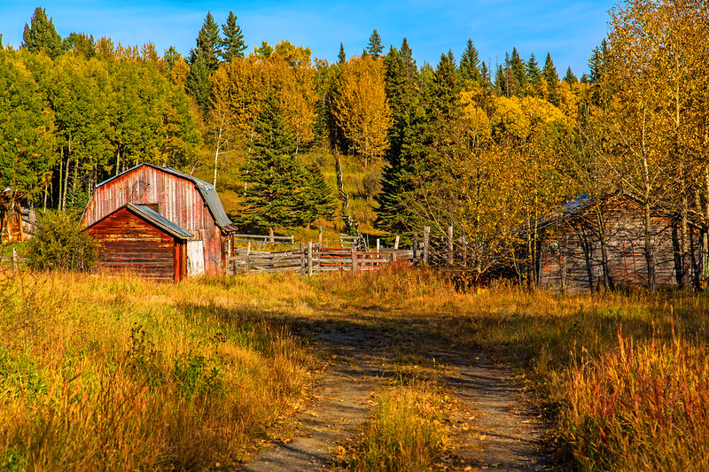 Backcountry Ranch