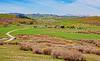 Mt. Sentinel Ranch