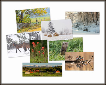 Photographs for Sale