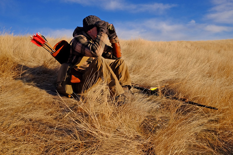 Grassland Roots