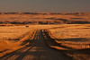 Sunrise -  Southeastern Alberta
