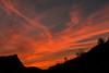 Dawn - Southeastern Alberta