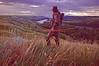 Grassland Hunter