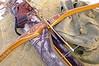 Hybrid Longbow