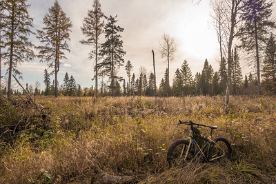 Superior National Forest, MN  BIKING 06880