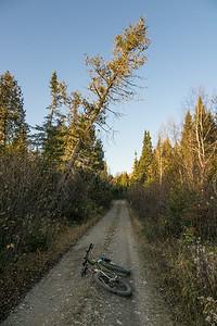 Camp 20 Road - Cook County, MN  BIKING 06810