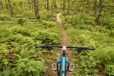 "BIKING 01225  ""Getting lost in the woods""  Britton Peak singletrack trails near Tofte, MN"