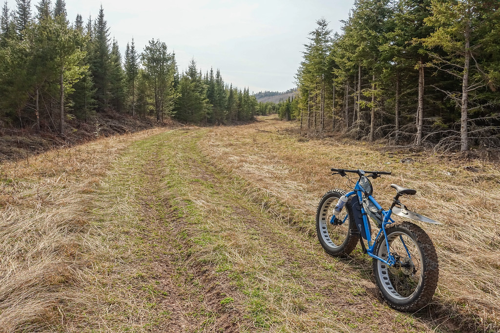 BIKING 00071<br /> <br /> May 5, 2016 - Fat bike ride on the Canadian side of the border near Grand Portage, MN. Tried biking a logging road that goes within a mile or so of Partridge Falls... for a while the riding was awesome!  (Ultimately I could not make it all the way through the road due to LOTS of brush and small trees covering the road from storm damage early in the winter).