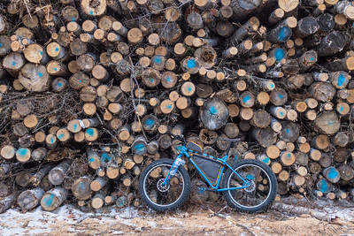 """Spring Ride, Exploring the logging areas"""