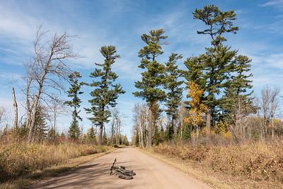 Caribou Trail - Cook County, MN  BIKING 06824