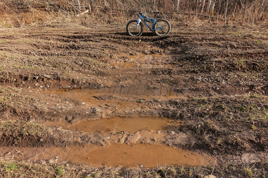 BIKING 00107<br /> <br /> Fat bike ride on the Canadian side of the border near Grand Portage, MN. Some pretty bad vehicle ruts along this old logging road.