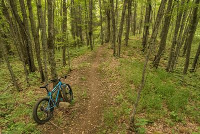 "BIKING 01259  ""Flowing section of trail on Skookum""  Britton Peak singletrack trails near Tofte, MN"