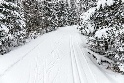 """Cross Country Ski Heaven"""