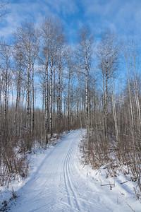 """Awesome day for skiing at Kakabeka Falls!"""