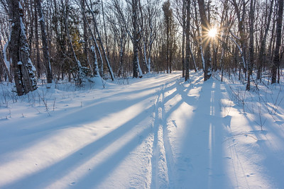 """CROSS COUNTRY SKI 05160  """"First Tracks in Fresh Snow""""  Grand Portage, MN"""