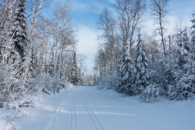"CROSS COUNTRY SKI 07944  ""Lappe's Winter Beauty""  Lappe Nordic Ski Centre - Thunder Bay, Ontario"