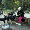 Dog Musher Mary Shields gives a tour of her dog yard and tells stories of her days on the trail.