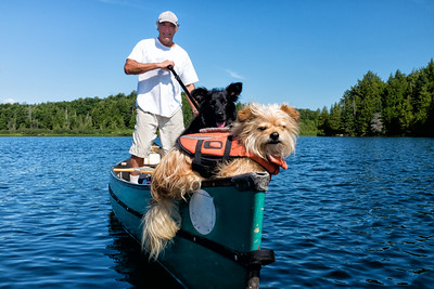 Canoeist and dogs on Meech Lake, Quebec