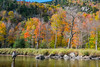 Fly Fishing the AuSable River near Lake Placid