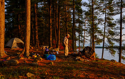 Late day light at campsite on Hurricane Island