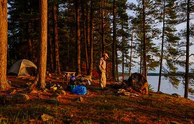 Golden light on Wilderness Campsite
